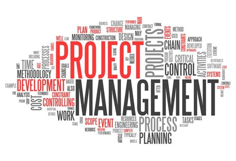 Tool Time: Project Management Software Tools for Teams